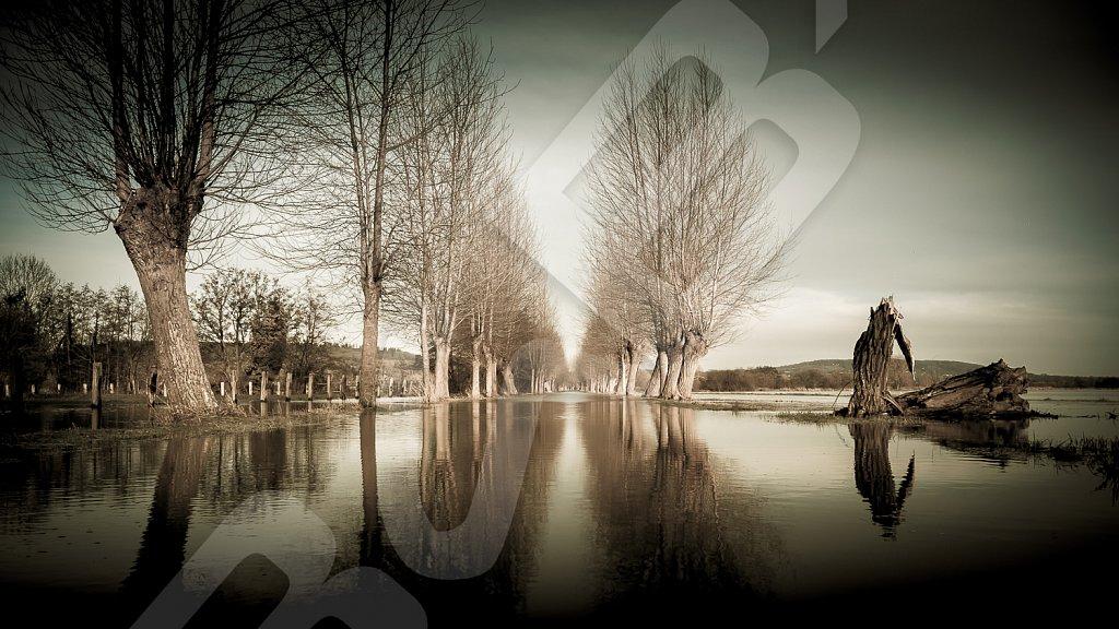 BabXIII-01660.jpg