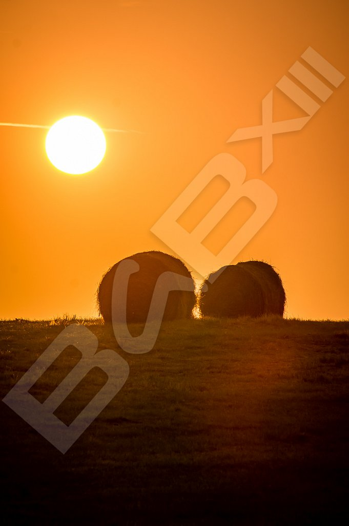 BabXIII-09935.jpg