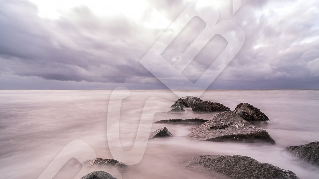 BabXIII-DSC04920.jpg